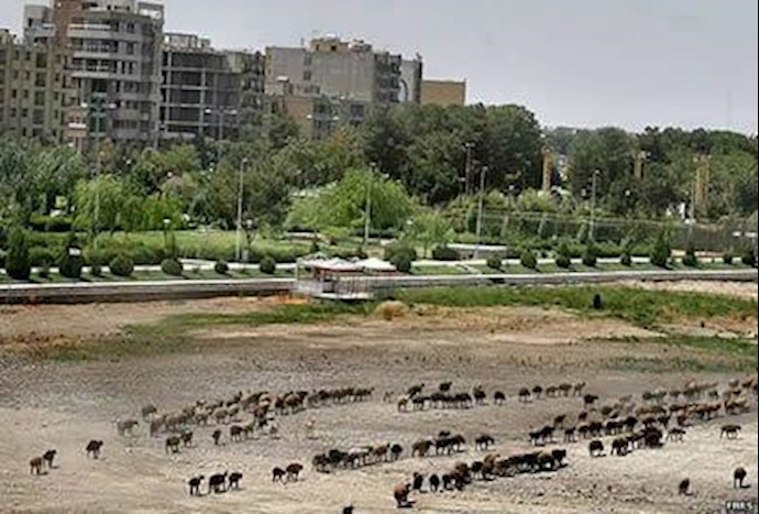 رودخانه زاینده رود، از بزرگترین رودخانههای ایران، در معرض خشکشدن