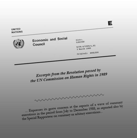 The resolution passed by the UN Commission on Human Rights