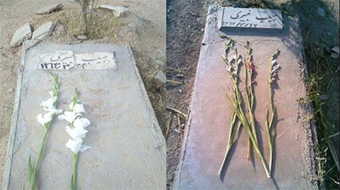 عکس مزار تخریب شده حبیب خبیری