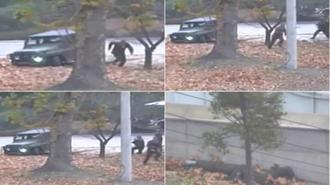 صحنه هایی از فرار سرباز کره شمالی به کره جنوبی