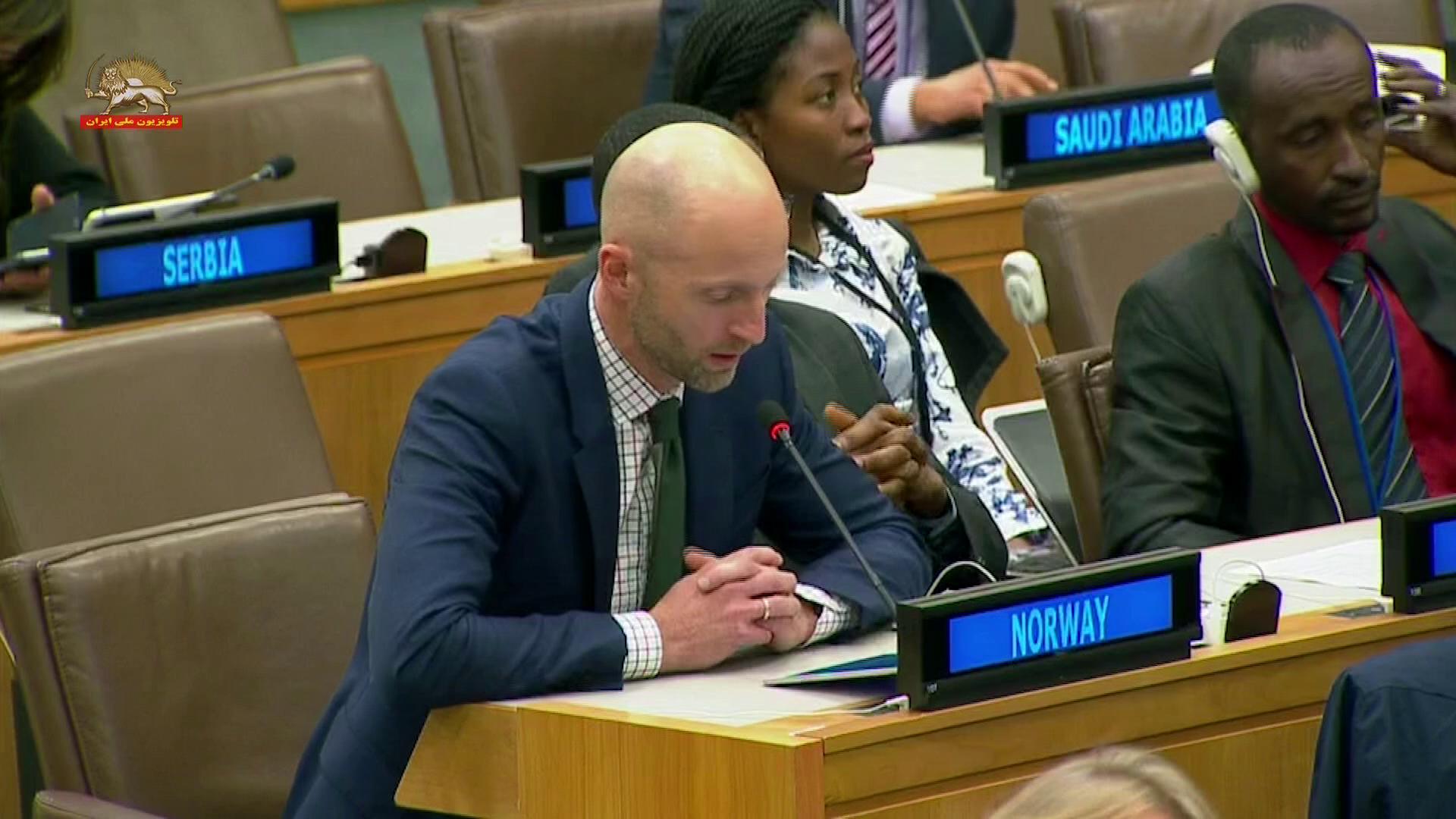 نماینده نروژ در اجلاس کمیتهٴ سوم مجمع عمومی
