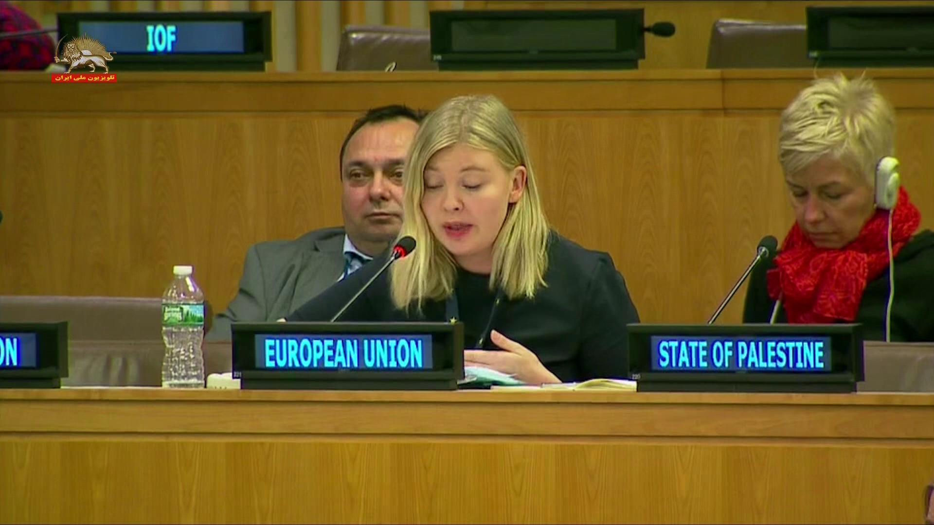 نماینده اتحادیه اروپا در اجلاس کمیتهٴ سوم مجمع عمومی