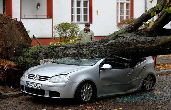 Strong winds have ripped up trees across central Europe