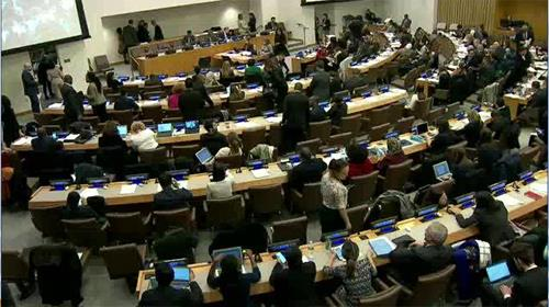 UN Thrid Committee on Human Rights