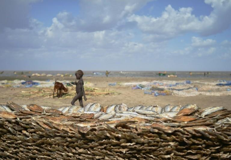 Lake Turkana in east Africa has gradually receded in recent years