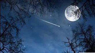 مهتاب و پروین و صنوبرهای یال