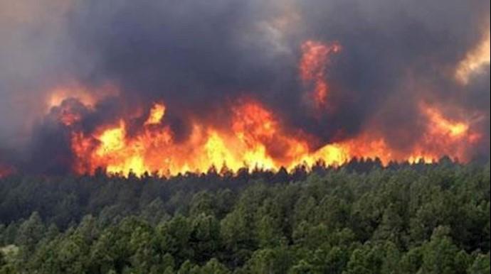 آتشسوزی گسترده در جنگلهای سوزنی گلستان