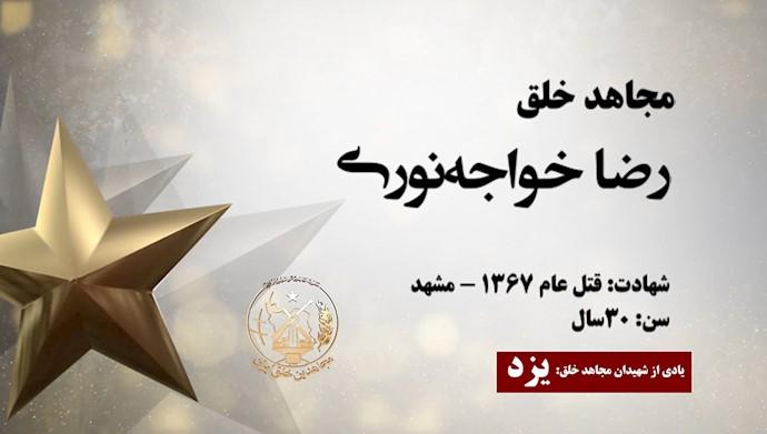 رضا خواجهنوری