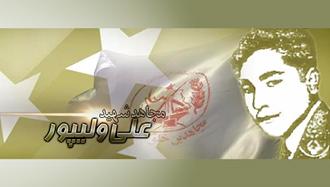 مجاهد شهید علی ولیپور