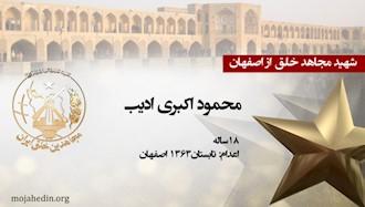 مجاهد شهید محمود اکبری ادیب