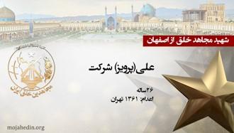 مجاهد شهید علی(پرویز) شرکت