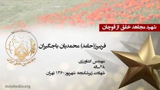 مجاهد خلق فریبرز(حامد) محمدیان باجگیران