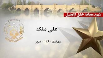 مجاهد شهید علی ملک