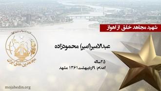 مجاهد شهید عبدالامیر(امیر) محمودزاده