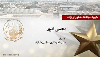 مجاهد شهید مجتبی امری
