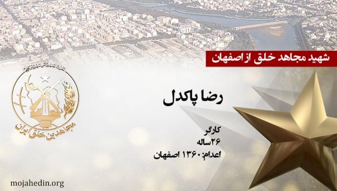 مجاهد شهید رضا پاکدل