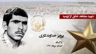 مجاهد شهید پرویز خداوندگاری