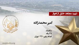 مجاهد شهید امیر محمدزاده