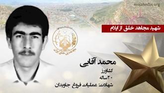 مجاهد شهید محمد آقایی