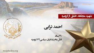 مجاهد شهید احمد ترابی