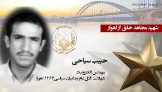 مجاهد شهید حبیب سیاحی