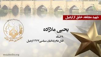 مجاهد شهید یحیی ملازاده