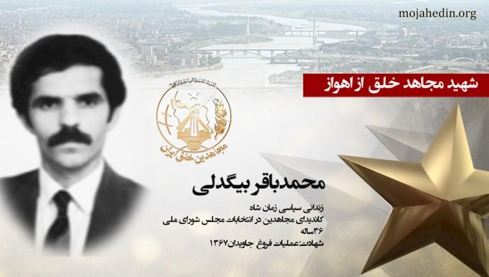 مجاهد شهید محمدباقر بیگدلی