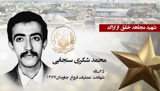 مجاهد شهید محمد شکری سنجابی