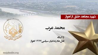 مجاهد شهید محمد عرب