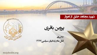 مجاهد شهید پروین باقری