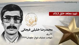 مجاهد شهید محمدرضا خلیلی فیجانی