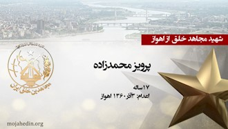 مجاهد شهید پرویز محمدزاده