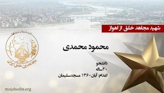 مجاهد شهید محمود محمدی
