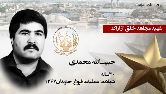 مجاهد شهید حبیبالله محمدی