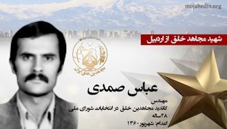 مجاهد شهید عباس صمدی