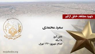 مجاهد شهید سعید محمدی