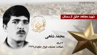 مجاهد شهید محمد شاهی