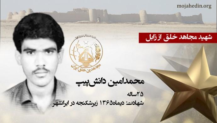 مجاهد شهید محمدامین دانشپیپ