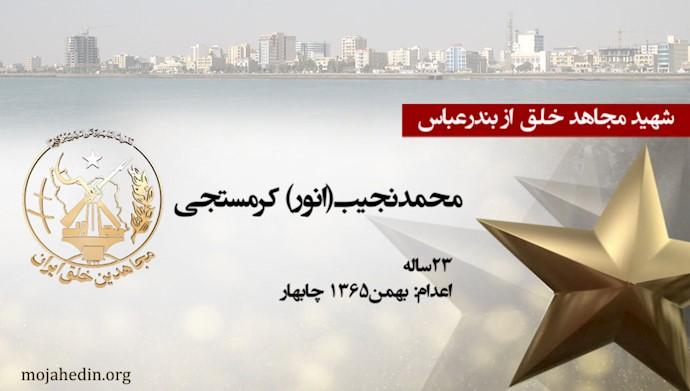 مجاهد شهید محمدنجیب(انور) کرمستجی