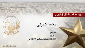 مجاهد شهید محمد شهرکی