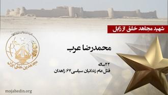 مجاهد شهید محمدرضا عرب
