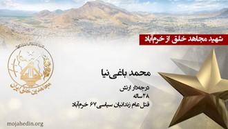 مجاهد شهید محمد باغینیا