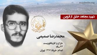 مجاهد شهید محمدرضا صمیمی