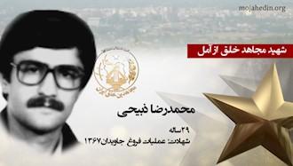 مجاهد شهید محمدرضا ذبیحی