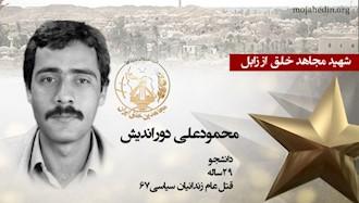 مجاهد شهید محمودعلی دوراندیش