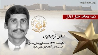مجاهد شهید عباس بزی الری