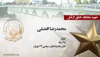 مجاهد شهید محمدرضا افضلی