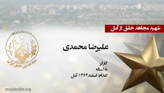 مجاهد شهید علیرضا محمدی