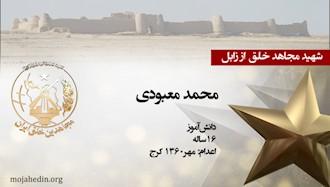 مجاهد شهید محمد معبودی