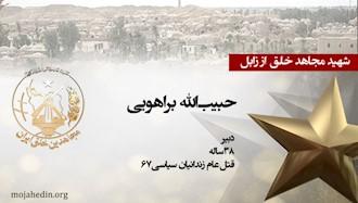 مجاهد شهید حبیبالله براهویی